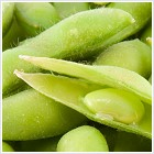Soy Beans for Natural Soy Facial Cream